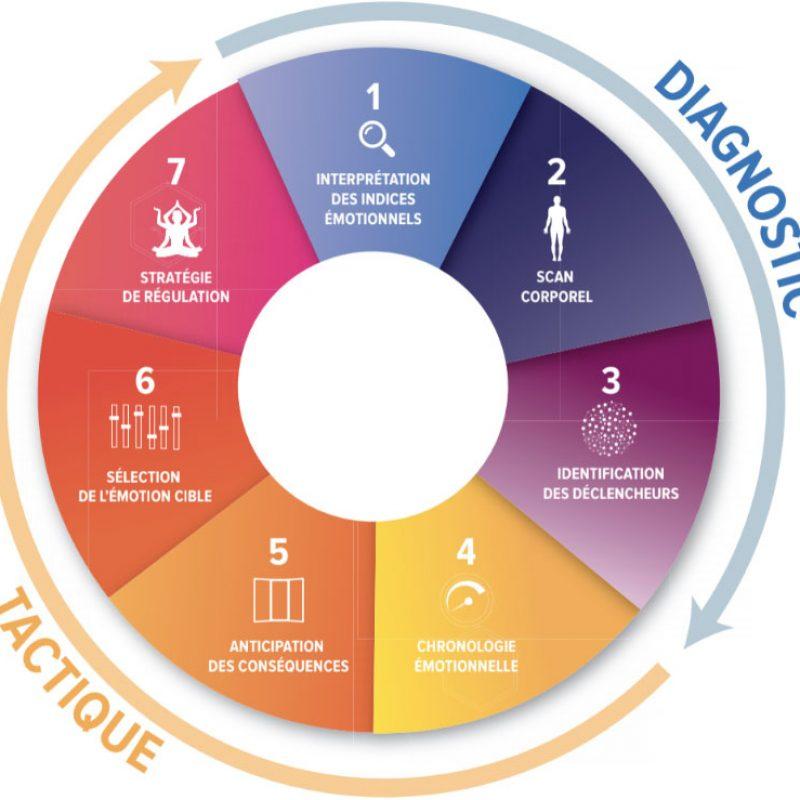 developper-son-itelligence-em (1)